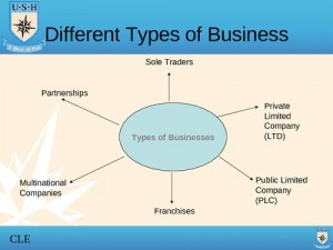 Different-Types-Of-Business-Ltd-And-Plc-Part-2-T1-Presentation-Transcript-15767